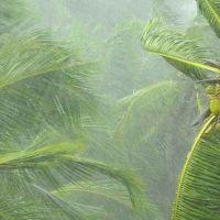 கேரளாவில் பேய் மழை